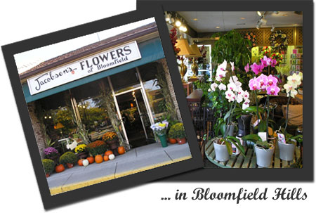 Jacobsen's Flowers store location in Bloomfield Hills, MI