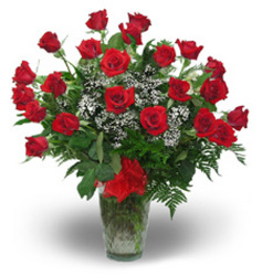 24 Beautiful Long Stem Red Roses