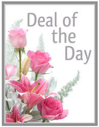 Deal of the Day - Winter In Waterford Michigan Jacobsen's Flowers