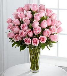Best Value!  3 Dozen Pink Roses In Waterford Michigan Jacobsen's Flowers