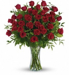 Best Value!  3 Dozen LS Red  Roses In Waterford Michigan Jacobsen's Flowers