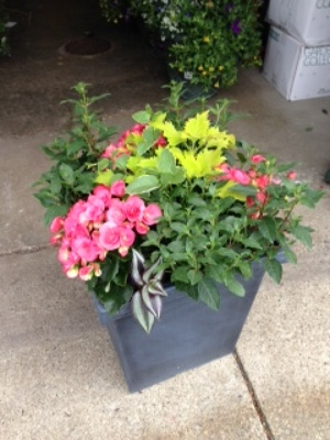 Shade Loving Porch Planters