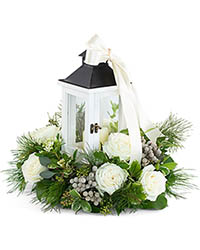 Illuminated with Wonder - SOLD OUT** In Waterford Michigan Jacobsen's Flowers