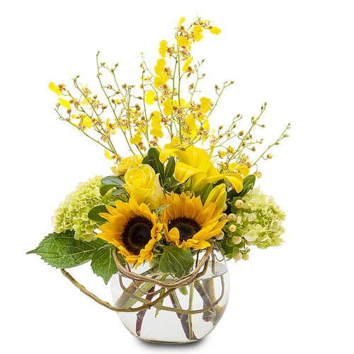 Send Flowers To Waterford Bloomfield Hills And Lake Orion