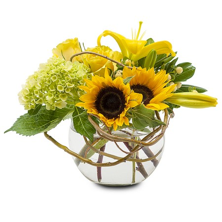 Send flowers to waterford bloomfield hills and lake orionmi with a click here for larger image mightylinksfo